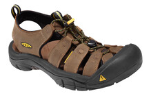 Keen Men Newport bison